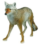 Flambeau 5985MS Master Series Coyote Decoy
