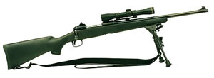 Savage Model 10FCM Scout Hunter Rifle 18138, 308 Winchester, Bolt Action, 20 in, Black Syn Stock, Blue Finish, 4 + 1 Rd, DBM