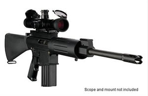 DPMS Panther LR 308T Rifle RFLR308T, 308 Winchester, Semi-Auto, 16 in BBL, A2 w/Trapdoor Stock, Black Finish, 19 + 1 Rd