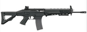 Sig Model 556 Rifle R55616BCRD, 223 Rem./5.56 Nato, Semi-Auto, 17 in, Folding Stock, Black Finish, 30 + 1 Rd, Adj Sights