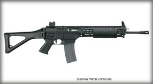Sig Sauer Model 556 SWAT Rifle R55616BCSRD,5.56 Nato, 16 in, Folding Stock, Black Finish, 30 + 1 Rd, Quad Rl Handguard