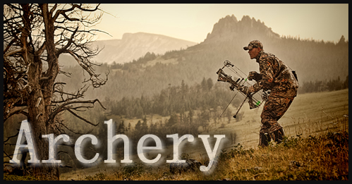 Hunting Bows & Archery Accessories for Sale